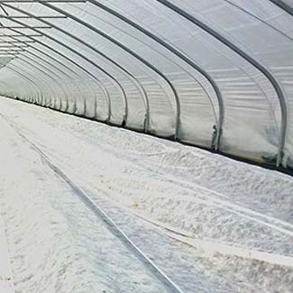 Folientunnel von Glaeser Grow