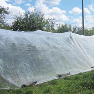 Erdflohnetz von Glaeser Grow