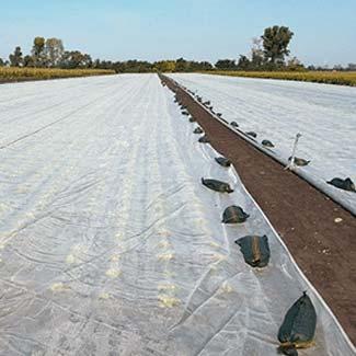 Befestigungsmaterialien von Glaeser Grow