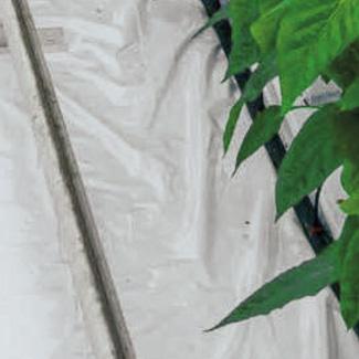 Mulchvlies von Glaeser Grow