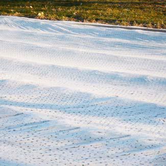 Perfolia Lochfolie Ernteverfrühungsfolie Antitau-Thermik von Glaeser Grow